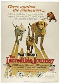 A Incrível Jornada (1963)