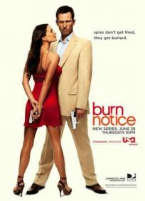 Burn Notice - 1ª Temporada