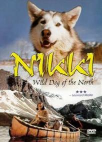 Nikki, O Cão Selvagem do Norte