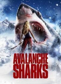 Avalanche de Tubarões