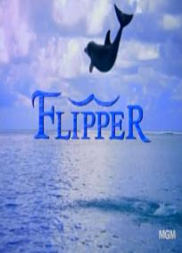 Flipper - As novas aventuras de Flipper