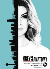 Greys Anatomy - 13a Temporada