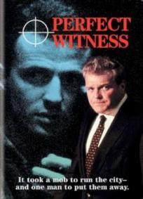 Testemunha Perfeita