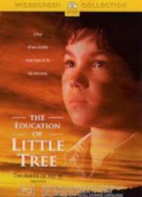 A Educação de Pequena Árvore
