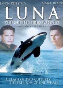 Luna - O Espírito da Baleia