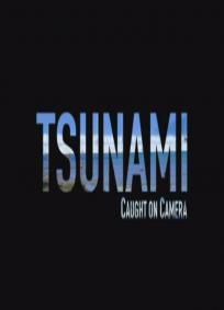 Tsunami - Através das Lentes