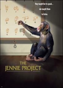 O Projeto Jennie