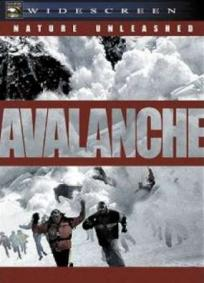 Nature Unleashed - Avalanche