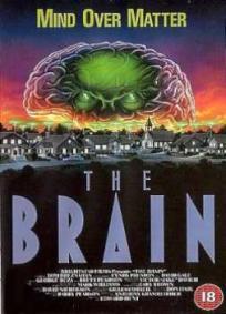 O Cérebro
