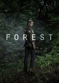 O Bosque (2017)