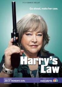 Harry´s Law - 1ª Temporada