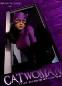 Catwoman - The Diamond Exchange