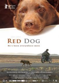 Cão Vermelho