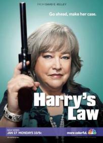 Harry´s Law - 2ª Temporada
