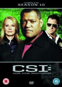 CSI - Las Vegas - 10ª Temporada