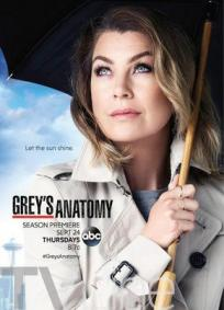 Greys Anatomy - 12a Temporada