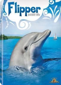 Flipper - As novas aventuras de Flipper - 3ª Temporada