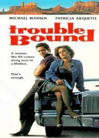 Arriscando Tudo (1993)