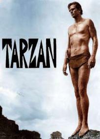 Tarzan (TV)