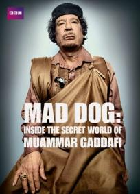Mad Dog - Inside the secret world of Muammar Gaddafi