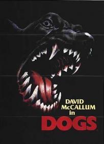 A Revolta dos Cães