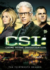 CSI - Las Vegas - 14º Temporada (2013)