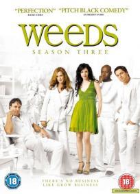 Weeds - 3ª Temporada