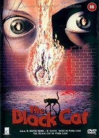 O Gato Negro