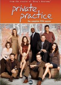 Private Practice - 5ª Temporada