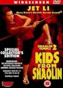 Templo de Shaolin 2