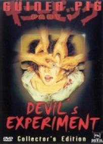 Guinea Pig - Devils Experiment