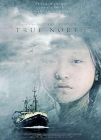 Verdadeiro Norte