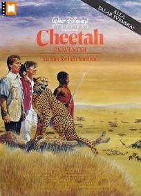 Cheetah, Uma Aventura na África