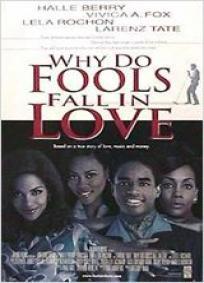 Por Que o Amor Enlouquece