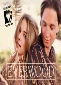 Everwood - 4ª Temporada