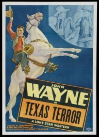 Terror no Texas