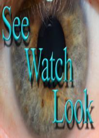 Seewatchlook – O que você vê quando olha o que enxerga?