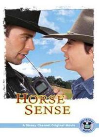 Um Jeito Especial com Cavalos