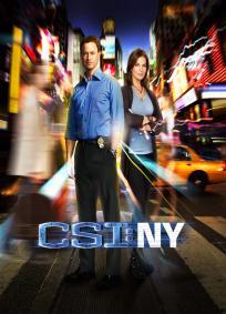 CSI: NY - 9ª Temporada