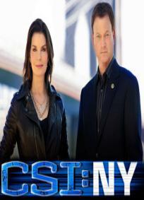 CSI: NY - 7ª Temporada
