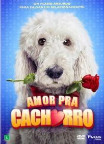 Amor Pra Cachorro 2014