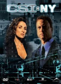 CSI: NY - 6ª Temporada