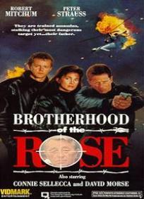A Irmandade da Rosa