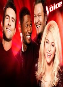 The Voice - 4° Temporada