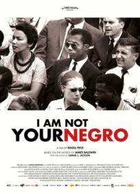 Eu Não Sou Seu Negro