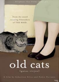 Gatos Velhos
