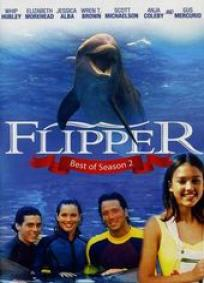 Flipper - As novas aventuras de Flipper - 2ª Temporada